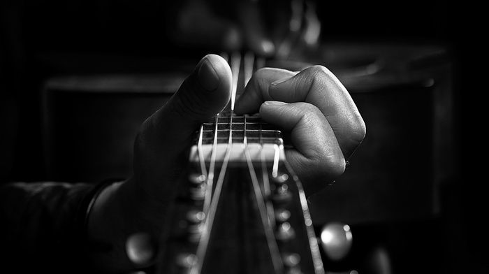 monochrome, guitar