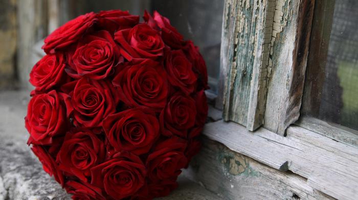 roses, macro, window, bouquet, flowers
