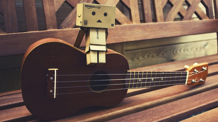 Danbo, guitar