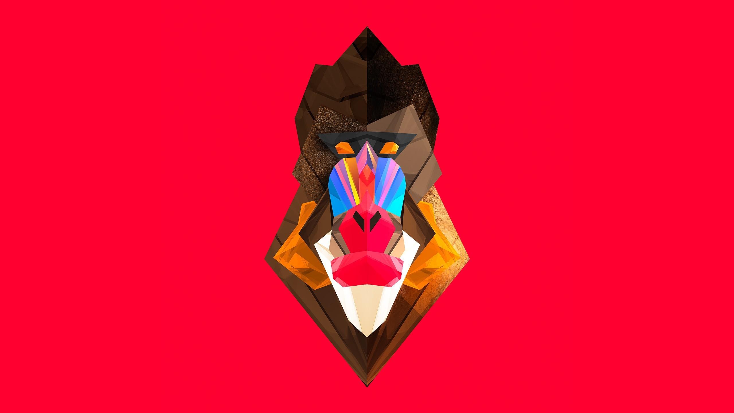 digital art mandrill monkeys artwork justin maller facets