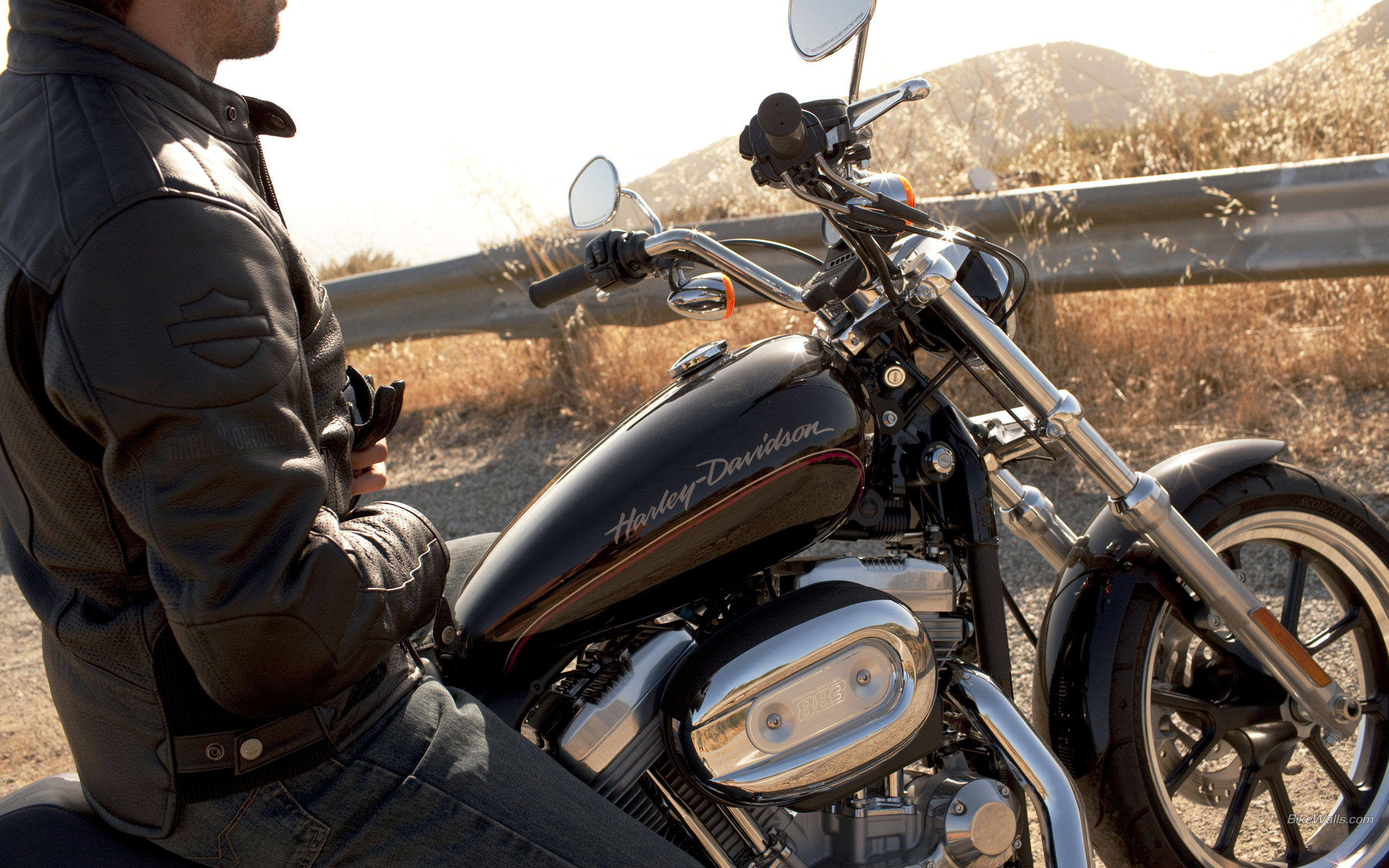 harley davidson distribution channel functions A vertical integration strategy -- operating at more than one level of the distribution channel -- has several benefits.