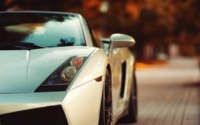 Lamborghini, car, white cars