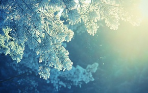 sunlight, winter, peaceful, cold, snow, anime