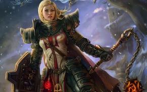 crusaders, fantasy armor, knight, Diablo III