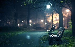 lights, depth of field, road, bench, trees, street
