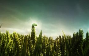 фото манипуляции, зеленый, глубина резкости, животные