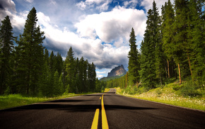 дорога, деревья, пейзаж, лес, природа