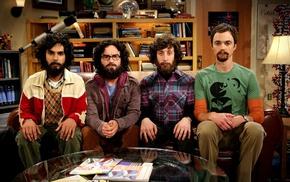 TV, Sheldon Cooper, beards, The Big Bang Theory, scientists, sitting
