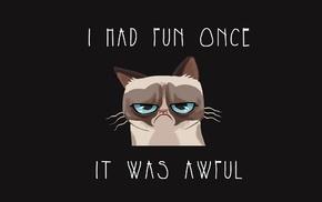 cartoon, cat, humor, Grumpy Cat