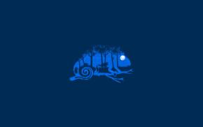 животные, минимализм, синий