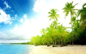 beach, summer, sea, Sun, greenery