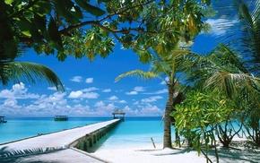 greenery, summer, berth, sea