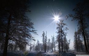 snow, sky, nature, winter