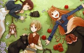 anime, Spice and Wolf, Holo