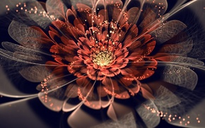 fractal flowers, flowers, fractal, abstract