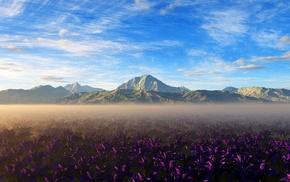 mountain, purple flowers, nature, landscape, flowers