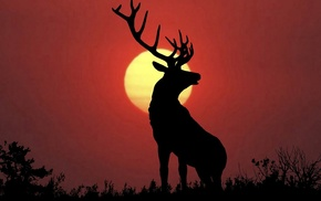 nature, deer, elk, animals