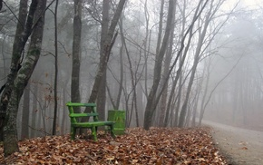 leaves, nature, path, bench, mist, trees