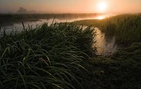 пейзаж, трава, закат