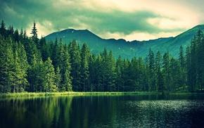 nature, water