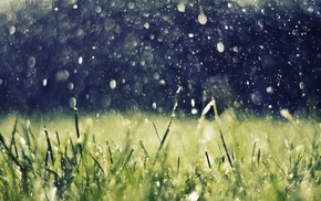 artwork, nature, rain, grass, water drops