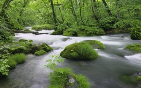 creek, stones, mist, nature