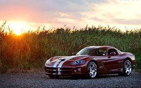 Dodge Viper, car
