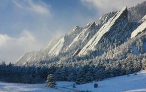 снег, горы, деревья, природа