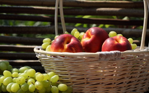 grapes, apples, colorful, nature, basket