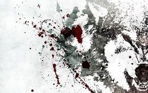 background, stunner, wolf, white, splash