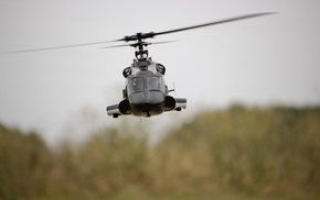fly, forest, aircraft, helicopter, sky