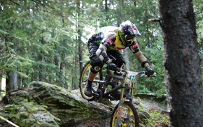 bicycle, sports, extreme, forest