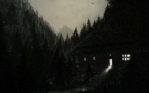 light, forest, black, rain, nature