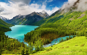 trees, mountain, hills, view, nature
