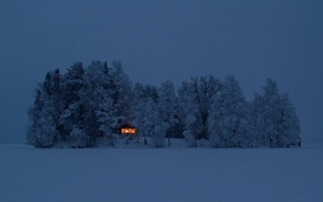 snow, forest, cabin