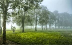 пейзаж, деревья