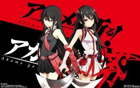 anime, anime girls, Akame ga Kill, Akame