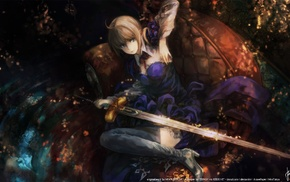 Saber, Fate Series, anime