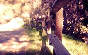 солнечный свет, трава, фотография, забор