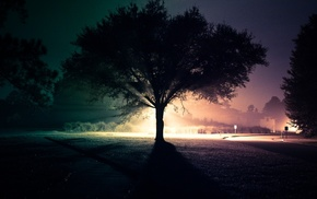 light, cities, road, tree, street